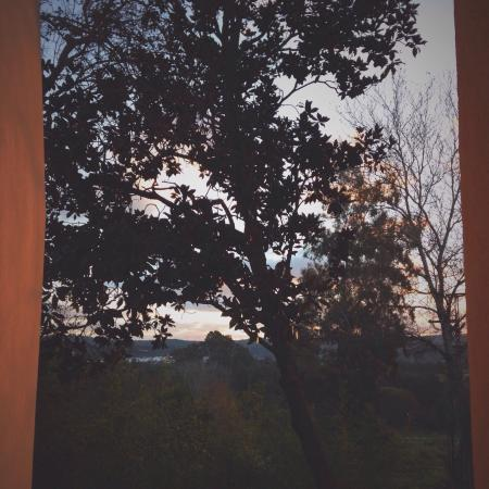 La Almoraima : El entorno natural. Amanecer.