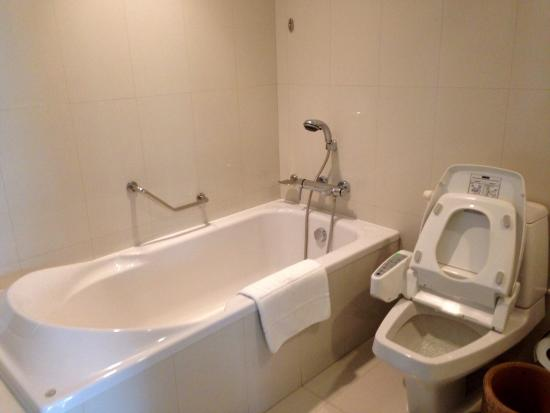 bath tub amp toilet shower room is next to the toilet superb heated bird bath in bathroom contemporary with