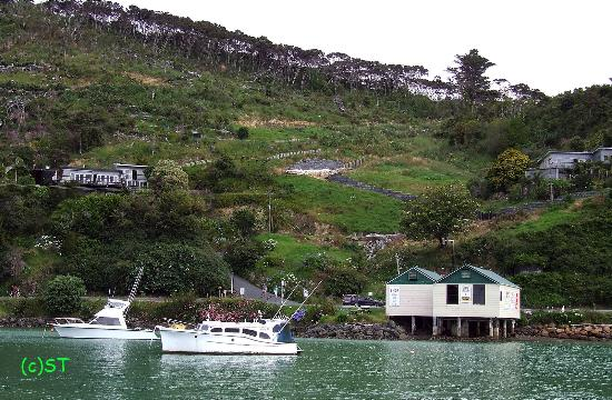 Whangaroa Harbour: Hill on harbour