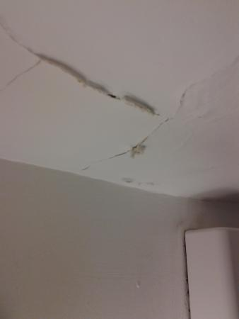 Hawthorne Hotel: cracked ceiling in bathroom