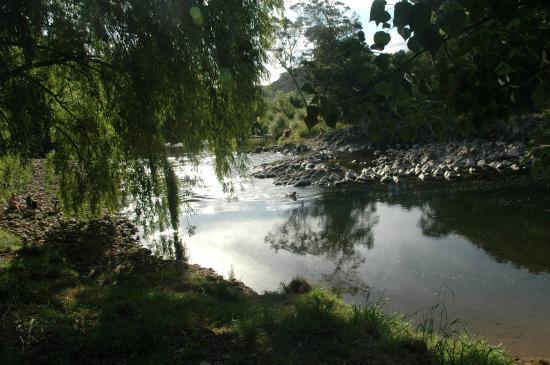 Karangahake River Lodge & Campervan Park