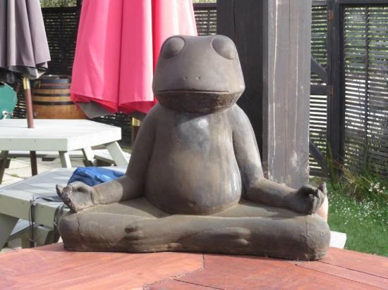 Whistling Frog Cafe & Bar: Zen Frog