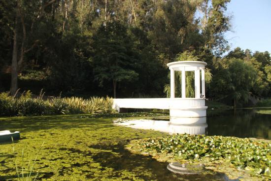 Laguna billede af jard n botanico nacional vina del mar for Jardin botanico vina