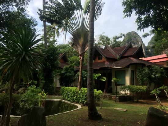 Sunrise Tropical Resort: teren hotelu