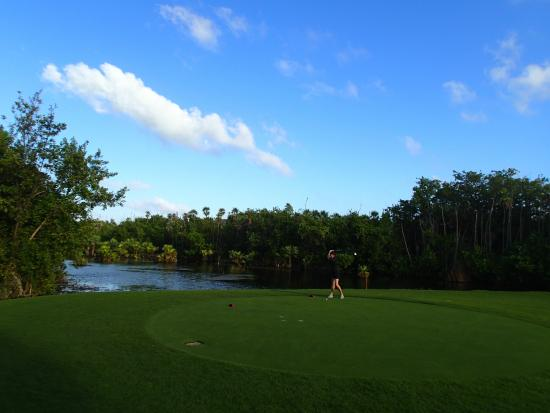 Riviera Cancun Golf Resort: Yeah, it's all that