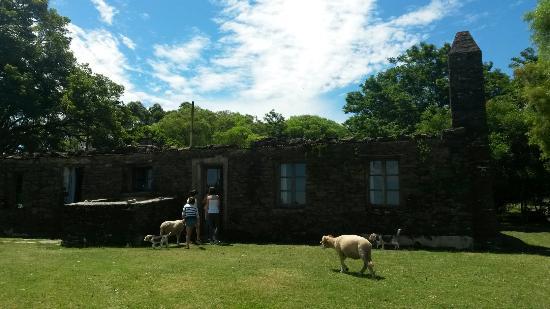 Parque Arqueológico Mina La Oriental: Mina La Oriental - Estancia