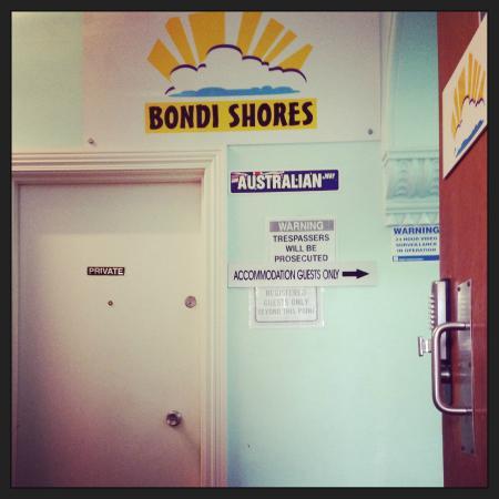 bondi shores