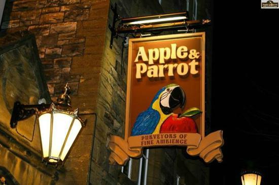 Apple & Parrot