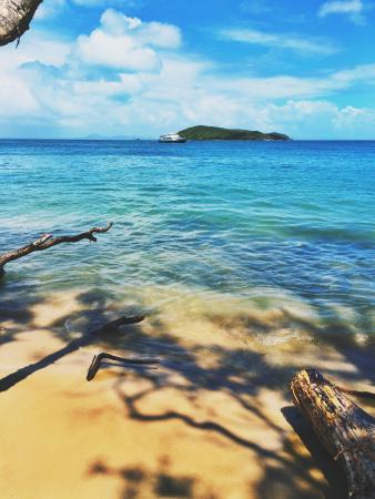 Great Keppel Island Hideaway : Outside my cabin