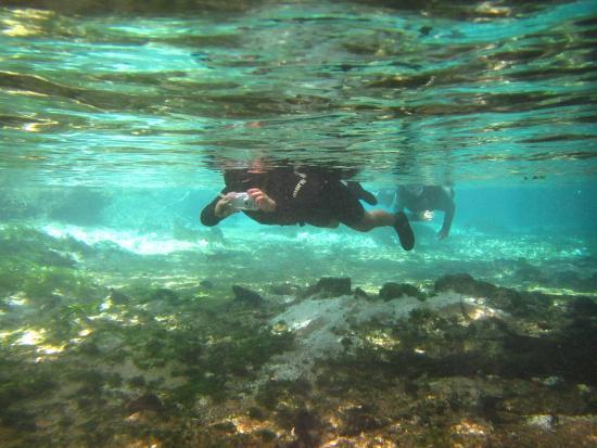 Nascente do Rio Sucuri - Bonito - MS - BR