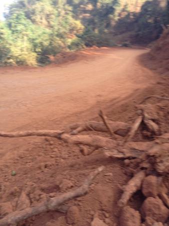 Hillside - Nature Lifestyle Lodge : Road going to hillside resort