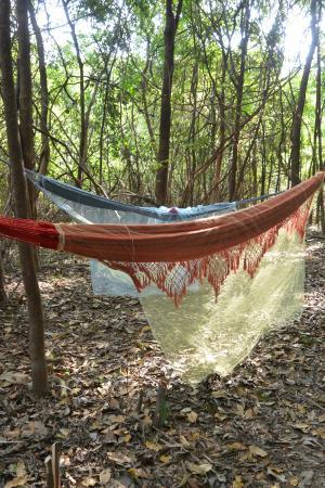 Pousada Manaus: Übernachtung in Hängematten
