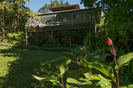 The Guest Houses at Malanai in Hana : grounds