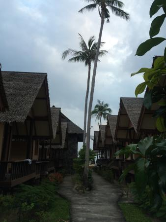 Phangan Cottages: View to the beach