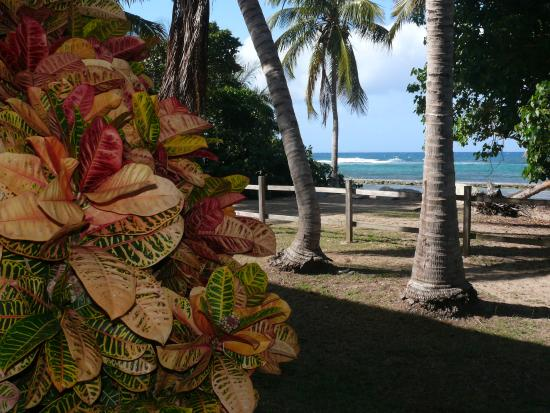 Ababor Suites: View from the grounds to the beach