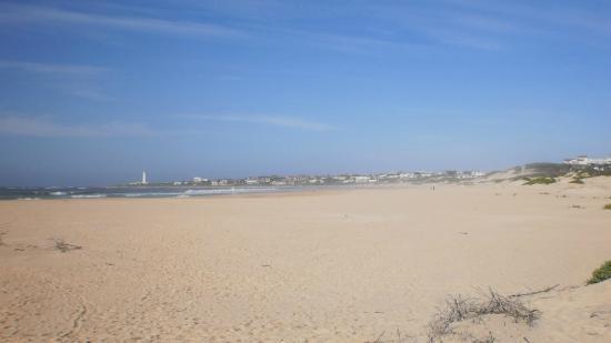 Cape St Francis Resort : Lång härlig sandstrand med hamnen i St Francis i bakgrunden
