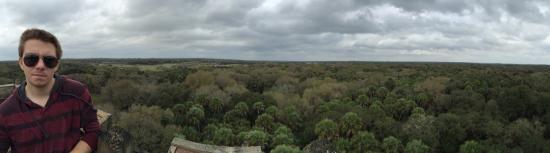 Myakka Canopy Walkway : Amazing views!
