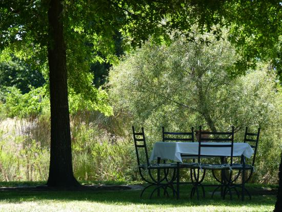 Glenwood Vineyards : Outside tables for lunch - perfect dappled shade