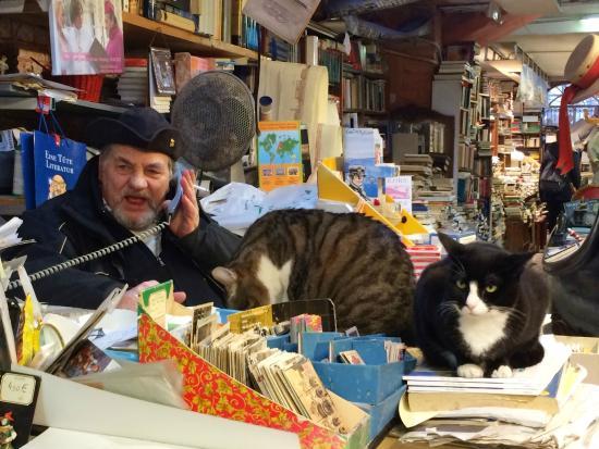 Libreria Acqua Alta: Proprietor and cats