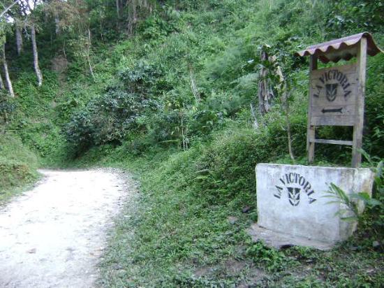 Sierra Nevada de Santa Marta : Entrance to La Victoria