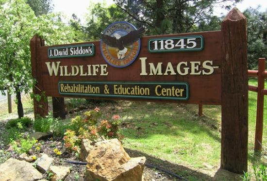 ‪Wildlife Images - Rehabilitation & Education Center‬