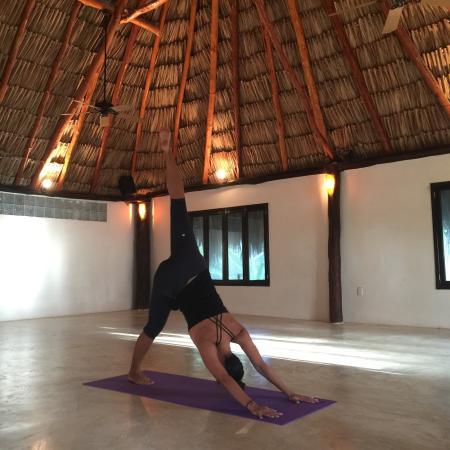 Maya Tulum Resort: Yoga room