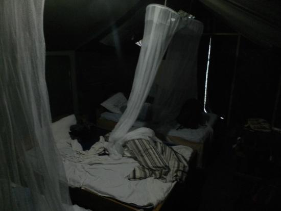 Wajee Mara Camp: Beds