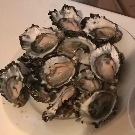 BIG4 St Helens Holiday Park: Huge oysters for $8 a dozen .