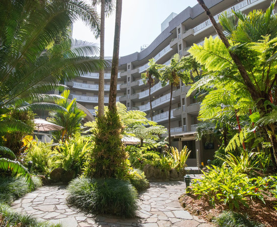 Garden at the DoubleTree by Hilton Hotel Cairns