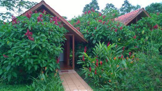 Hotel Villas Vista Arenal: Cottage (Villa)