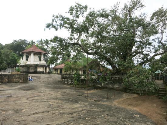 Temple of the Gadaladenia : Terrain of temple