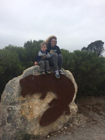 Coffin Bay National Park: Bottom of Lookout track