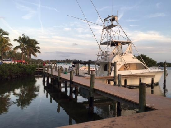 Casey key fish house osprey florida is a must dine while for Casey key fish house