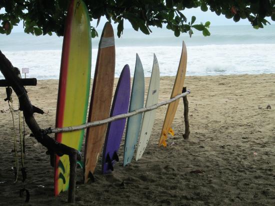 Totem Surf School