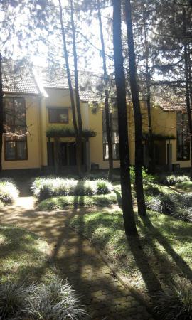 Puri Setiabudhi Residence: Backyard