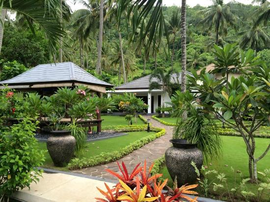 Dream Estate Resort : Resort Grounds