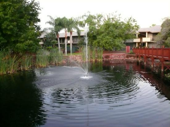 Park Shore Resort : Lake