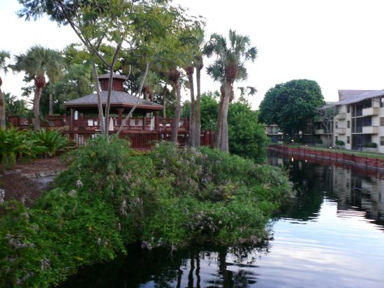 Park Shore Resort: Hotel Grounds