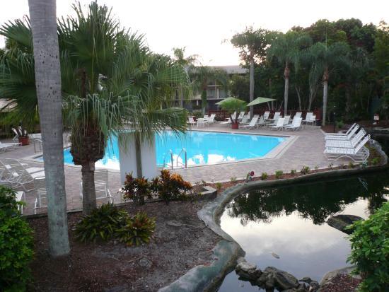 Park Shore Resort: Pool Area