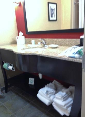 Comfort Suites Florence : modern sink