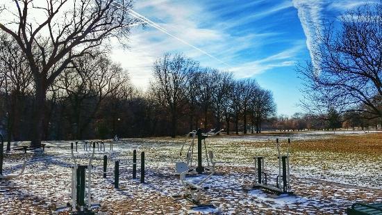 Elmwood Park: Outdoor Weight Area
