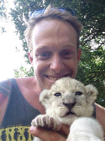 Akwaaba Lodge : White lion cub