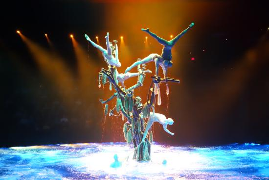 Great Tree and people - Picture of Le Reve - The Dream, Las Vegas ...