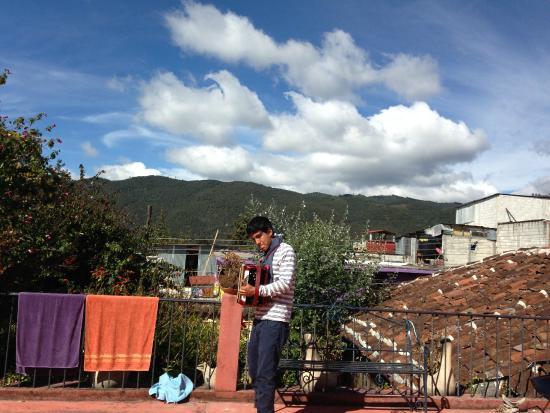 Hostel Qhia : La terraza del hostal es encantadora