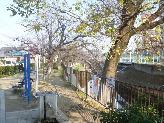 Tomorogi Ryokuchi Park
