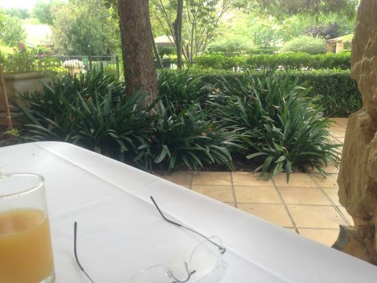 Mercure Resort Hunter Valley Gardens : Relaxing Garden View at Breakfast