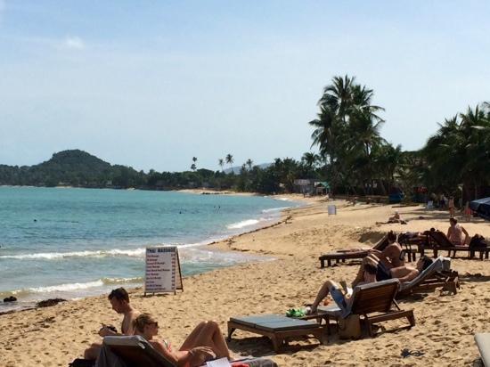 """Hutcha Resort : les quelques transats de cet hotel (10 maxi) sont ceux entre le panneau Thai Massage et le """"bras"""