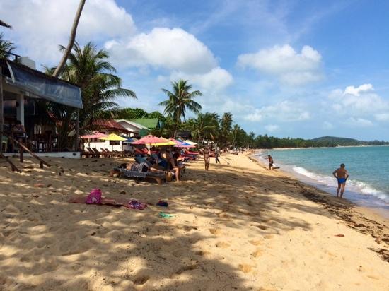 vue sur le côté gauche de la baie, depuis la plage en face de l'hôtel Hutcha Resort 27/12/14