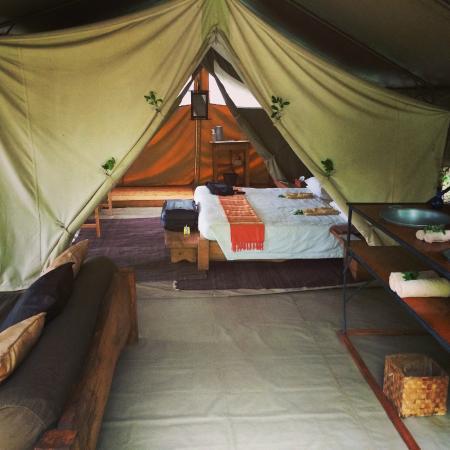 Naibor Camp: Standard tent