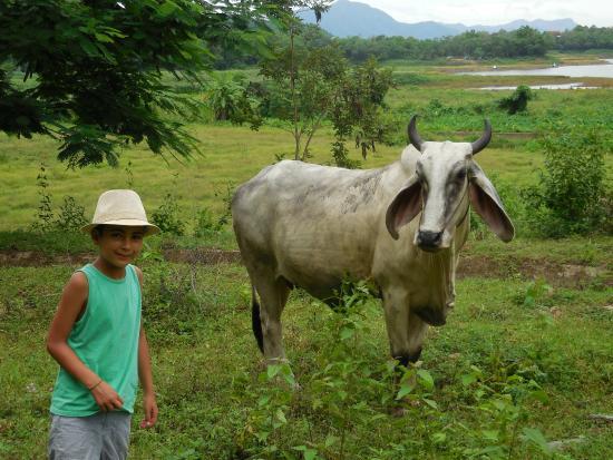 Mai Siam Resort: dans la campagne environnante